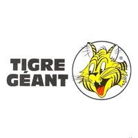 circulaire tigre géant circulaire - flyer - catalogue en ligne